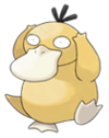 Today is so dull it gives Psyduck an even bigger headache!
